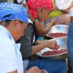 womensnutritionalprogram